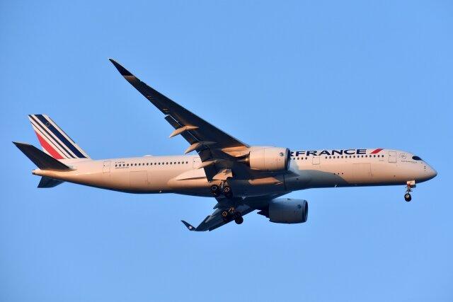 2021年08月28日に撮影されたエールフランス航空の航空機写真