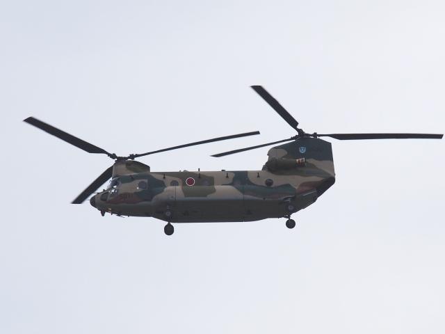 FT51ANさんが、築城基地で撮影した航空自衛隊 CH-47J/LRの航空フォト(飛行機 写真・画像)