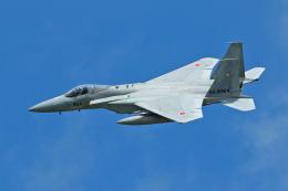 スカルショットさんが、三沢飛行場で撮影した航空自衛隊 F-15J Eagleの航空フォト(飛行機 写真・画像)