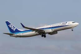 プルシアンブルーさんが、仙台空港で撮影した全日空 737-881の航空フォト(飛行機 写真・画像)