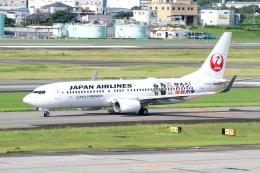 goshiさんが、伊丹空港で撮影した日本航空 737-846の航空フォト(飛行機 写真・画像)