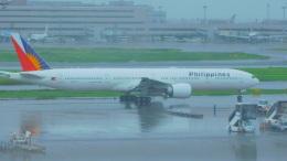 ねこかいぬさんが、羽田空港で撮影したフィリピン航空 777-36N/ERの航空フォト(飛行機 写真・画像)