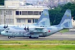 SFJ_capさんが、名古屋飛行場で撮影した航空自衛隊 C-130H Herculesの航空フォト(飛行機 写真・画像)