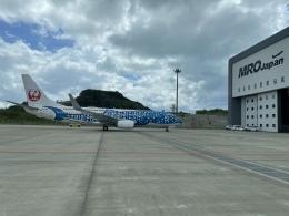 若鷹軍団さんが、那覇空港で撮影した日本トランスオーシャン航空 737-8Q3の航空フォト(飛行機 写真・画像)