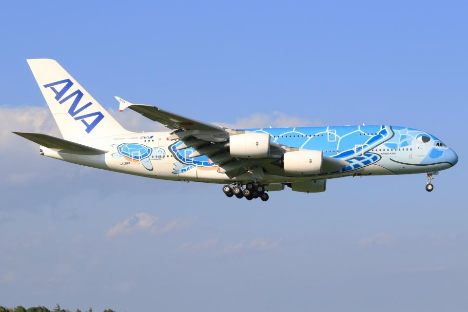空飛ぶ丸さんさんの全日空 Airbus A380 (JA381A) 航空フォト