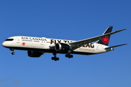 こだしさんが、成田国際空港で撮影したエア・カナダ 787-9の航空フォト(飛行機 写真・画像)