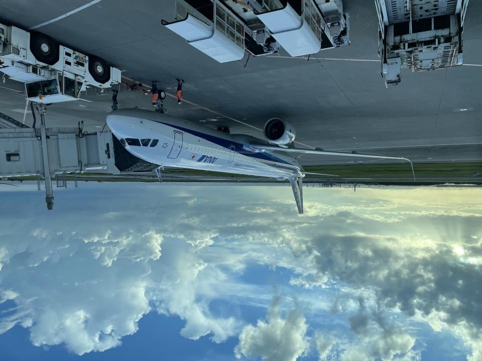 若鷹軍団さんの全日空 Airbus A321neo (JA145A) 航空フォト