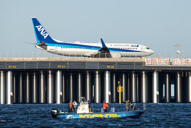 SGR RT 改さんが、羽田空港で撮影した全日空 737-881の航空フォト(飛行機 写真・画像)