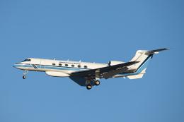 SGR RT 改さんが、羽田空港で撮影した海上保安庁 G-V Gulfstream Vの航空フォト(飛行機 写真・画像)
