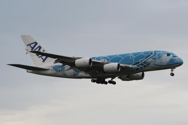 木人さんが、成田国際空港で撮影した全日空 A380-841の航空フォト(飛行機 写真・画像)