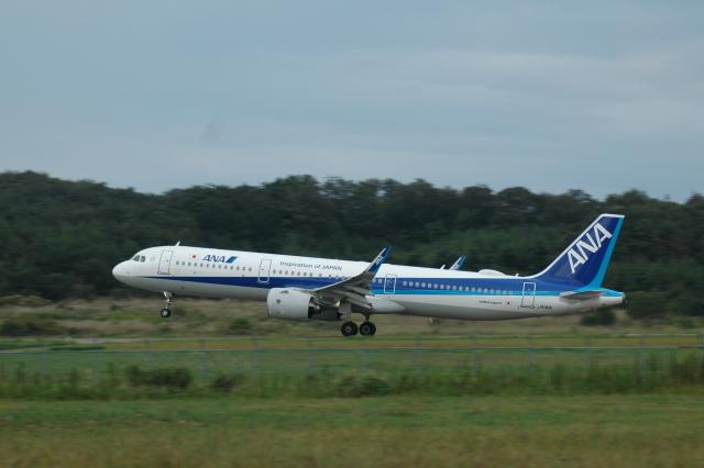 Honuさんが、能登空港で撮影した全日空 A321-272Nの航空フォト(飛行機 写真・画像)