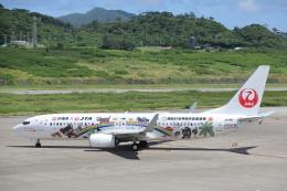 安芸あすかさんが、石垣空港で撮影した日本トランスオーシャン航空 737-8Q3の航空フォト(飛行機 写真・画像)