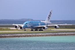 KU-BAさんが、那覇空港で撮影した全日空 A380-841の航空フォト(飛行機 写真・画像)