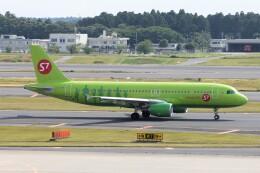 フッ軽の極美さんが、成田国際空港で撮影したS7航空 A320-214の航空フォト(飛行機 写真・画像)