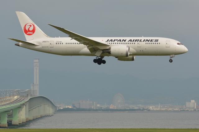 Deepさんが、関西国際空港で撮影した日本航空 787-8 Dreamlinerの航空フォト(飛行機 写真・画像)