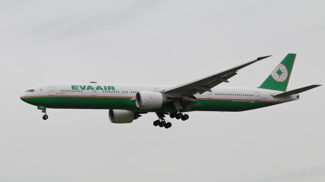raichanさんが、成田国際空港で撮影したエバー航空 777-36N/ERの航空フォト(飛行機 写真・画像)