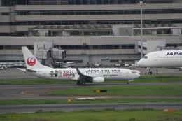 ガペ兄さんが、羽田空港で撮影した日本航空 737-846の航空フォト(飛行機 写真・画像)