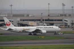 ガペ兄さんが、羽田空港で撮影した日本航空 767-346/ERの航空フォト(飛行機 写真・画像)