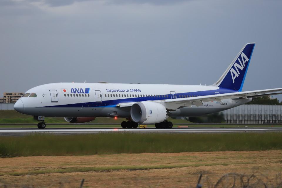 rokko2000さんの全日空 Boeing 787-8 Dreamliner (JA817A) 航空フォト