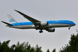 saoya_saodakeさんが、成田国際空港で撮影したKLMオランダ航空 787-9の航空フォト(飛行機 写真・画像)