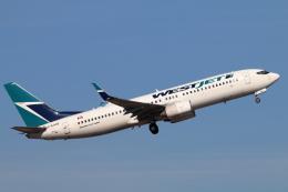 キャスバルさんが、フェニックス・スカイハーバー国際空港で撮影したウェストジェット 737-8CTの航空フォト(飛行機 写真・画像)
