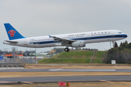 saoya_saodakeさんが、成田国際空港で撮影した中国南方航空 A321-231の航空フォト(飛行機 写真・画像)