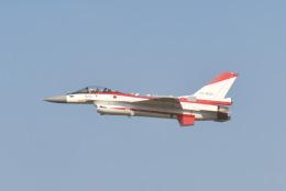 tamtam3839さんが、名古屋飛行場で撮影した航空自衛隊 F-2Aの航空フォト(飛行機 写真・画像)