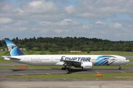 安芸あすかさんが、成田国際空港で撮影したエジプト航空 777-36N/ERの航空フォト(飛行機 写真・画像)