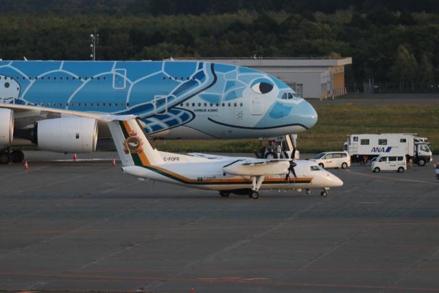 磐城さんが、新千歳空港で撮影したパル・エアロスペース DHC-8-106 Dash 8の航空フォト(飛行機 写真・画像)