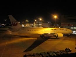 commet7575さんが、福岡空港で撮影した日本航空 777-246/ERの航空フォト(飛行機 写真・画像)