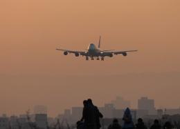 ちゅーげんさんが、伊丹空港で撮影した全日空 747-481(D)の航空フォト(飛行機 写真・画像)