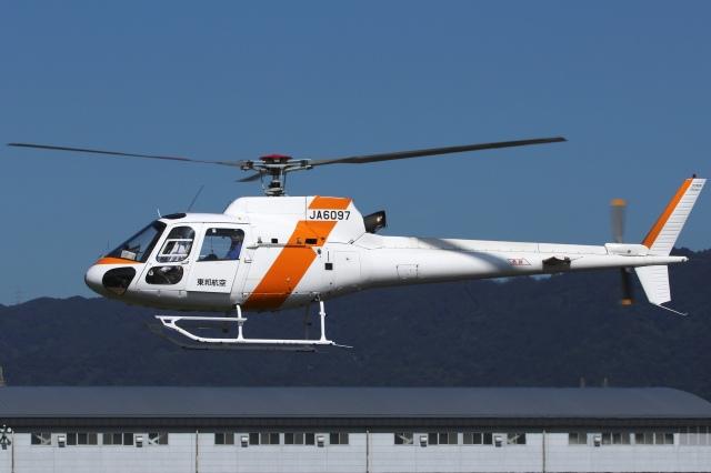 RJOY_Spotterさんが、八尾空港で撮影した東邦航空 AS350B2 Ecureuilの航空フォト(飛行機 写真・画像)