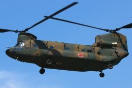 RJOY_Spotterさんが、八尾空港で撮影した陸上自衛隊 CH-47JAの航空フォト(飛行機 写真・画像)