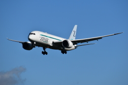 おすずこずんさんが、成田国際空港で撮影した日本航空 787-8 Dreamlinerの航空フォト(飛行機 写真・画像)