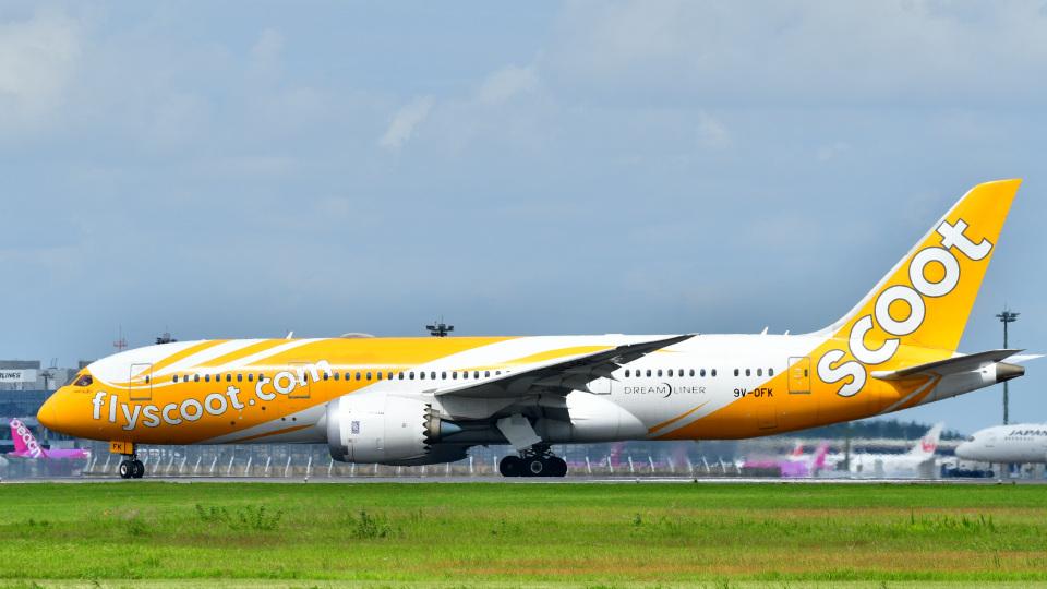 パンダさんのスクート Boeing 787-8 Dreamliner (9V-OFK) 航空フォト