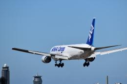おすずこずんさんが、成田国際空港で撮影した全日空 767-381/ERの航空フォト(飛行機 写真・画像)