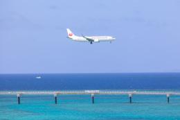 チャッピー・シミズさんが、那覇空港で撮影した日本トランスオーシャン航空 737-8Q3の航空フォト(飛行機 写真・画像)