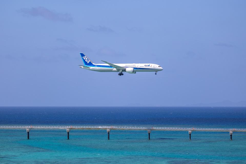 チャッピー・シミズさんの全日空 Boeing 787-9 (JA833A) 航空フォト