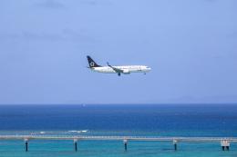 チャッピー・シミズさんが、那覇空港で撮影した全日空 737-881の航空フォト(飛行機 写真・画像)