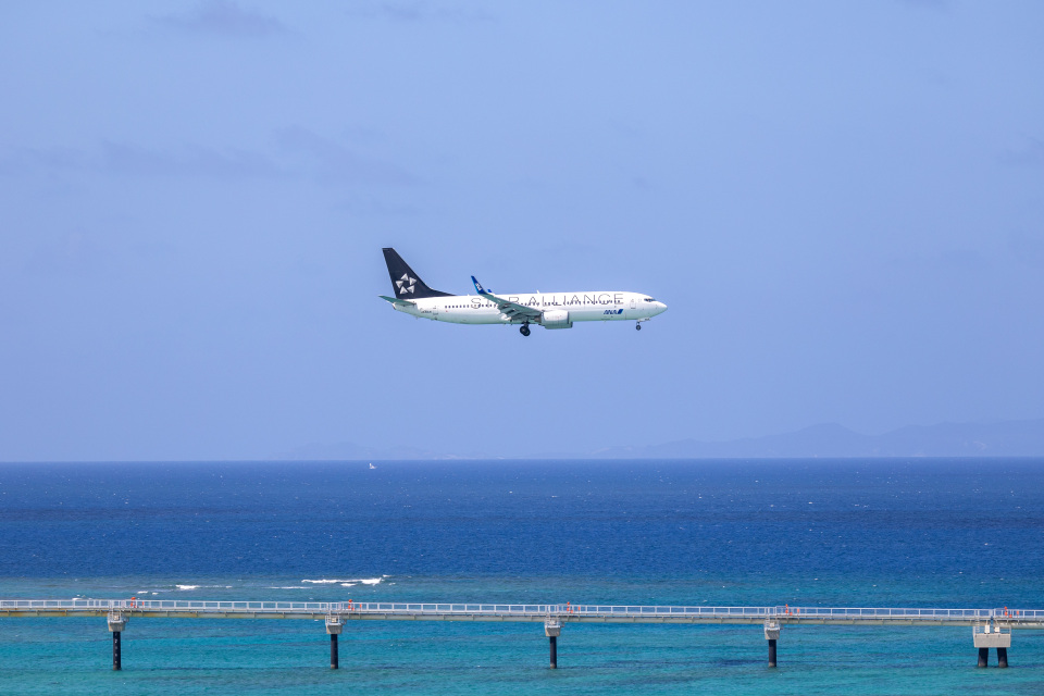 チャッピー・シミズさんの全日空 Boeing 737-800 (JA51AN) 航空フォト