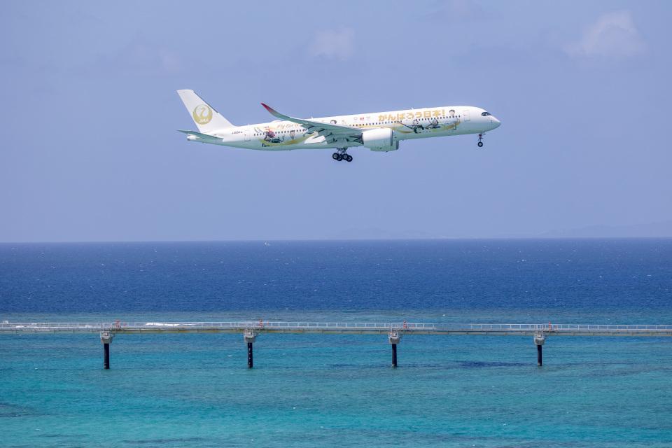 チャッピー・シミズさんの日本航空 Airbus A350-900 (JA06XJ) 航空フォト