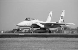 Night Owlさんが、横田基地で撮影したアメリカ空軍 F-15C Eagleの航空フォト(飛行機 写真・画像)