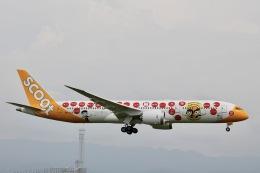 天王寺王子さんが、関西国際空港で撮影したスクート (〜2017) 787-9の航空フォト(飛行機 写真・画像)