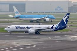 NIKEさんが、アムステルダム・スキポール国際空港で撮影したブルー・エア 737-8-MAXの航空フォト(飛行機 写真・画像)