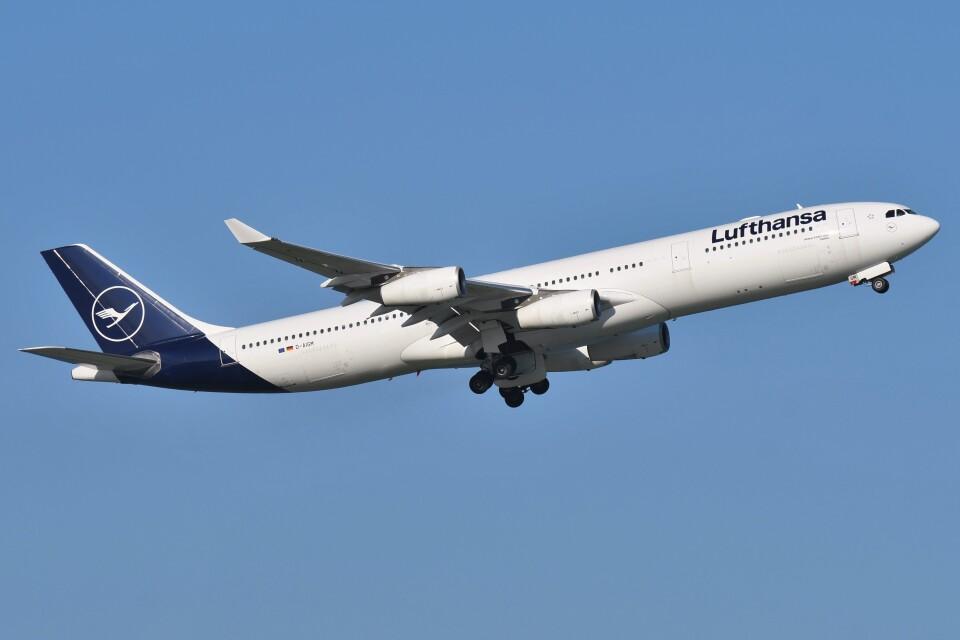 デルタおA330さんのルフトハンザドイツ航空 Airbus A340-300 (D-AIGM) 航空フォト