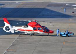 じーく。さんが、名古屋飛行場で撮影した中日本航空 AS365N3+ Dauphin 2の航空フォト(飛行機 写真・画像)