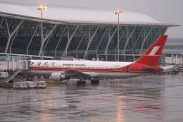 磐城さんが、上海浦東国際空港で撮影した上海航空 767-36D/ERの航空フォト(飛行機 写真・画像)