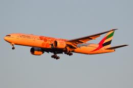 こだしさんが、成田国際空港で撮影したエミレーツ航空 777-31H/ERの航空フォト(飛行機 写真・画像)