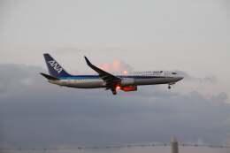 morirさんが、福岡空港で撮影した全日空 737-881の航空フォト(飛行機 写真・画像)