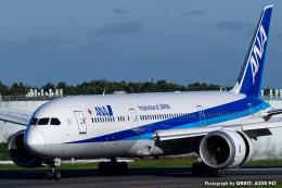 kina309さんが、成田国際空港で撮影した全日空 787-9の航空フォト(飛行機 写真・画像)